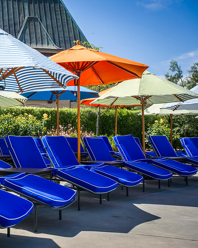 Lounge chairs poolside at Francis Coppola Winery.