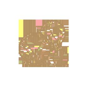 bocce balls icon